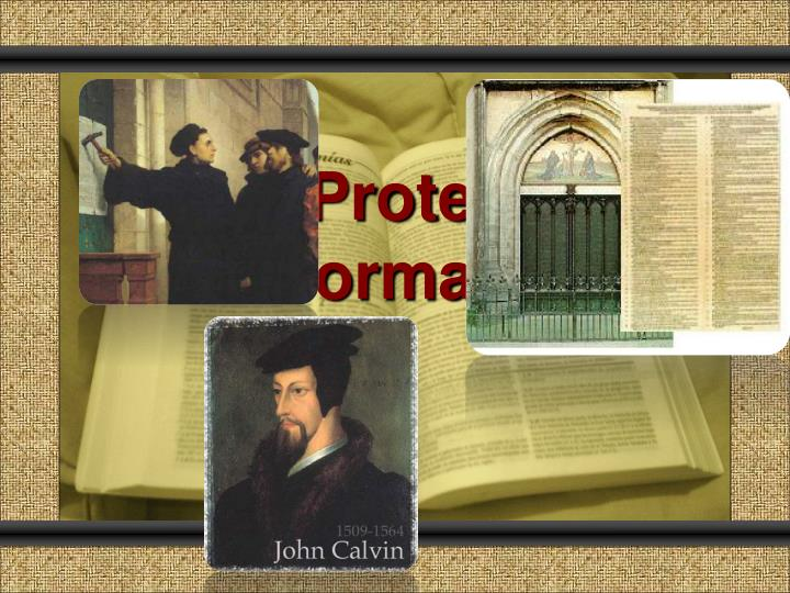 the protestant reformation n.