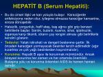 hepat t b serum hepatiti