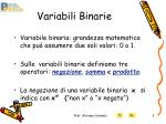 variabili binarie
