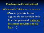 fundamento constitucional1