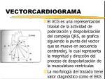 vectorcardiograma