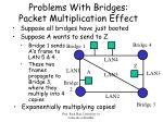 problems with bridges packet multiplication effect