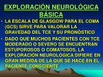 exploraci n neurol gica b sica