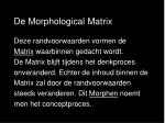 de morphological matrix2