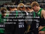 de morphological matrix22