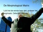 de morphological matrix23