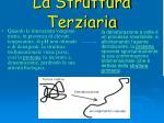 la struttura terziaria4