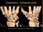carpal boss companion case2