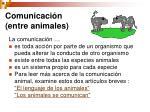 comunicaci n entre animales