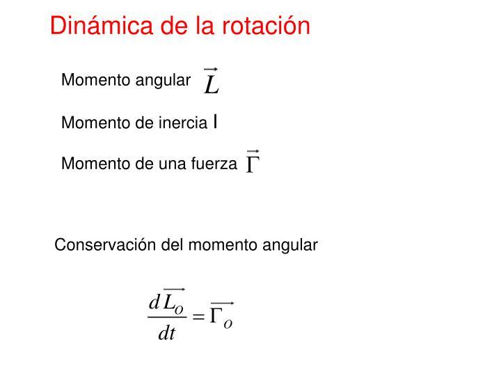 Dinámica de la rotación