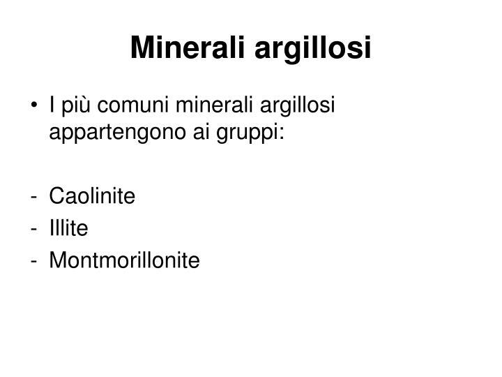 Minerali argillosi