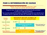 paso 2 determinaci n de causas