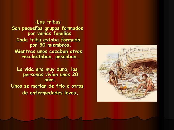 -Las tribus