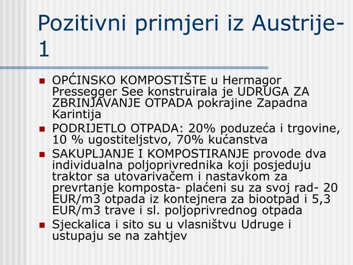 Pozitivni primjeri iz Austrije-1