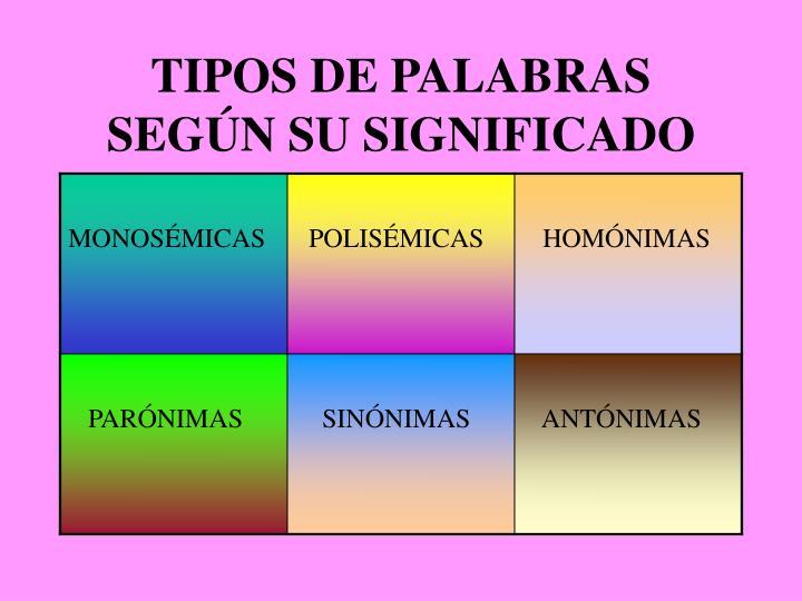 TIPOS DE PALABRAS SEGÚN SU SIGNIFICADO