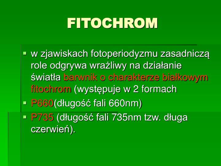 FITOCHROM