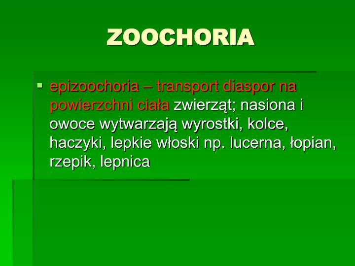 ZOOCHORIA