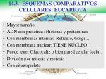14 3 esquemas comparativos celulares eucariota