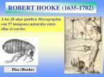robert hooke 1635 17022