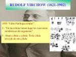 rudolf virchow 1821 1902