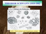 theodor schwann 1810 1882