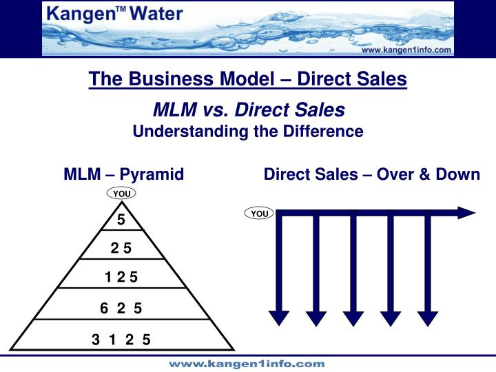 The Business Model – Direct Sales