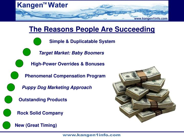 The Reasons People Are Succeeding
