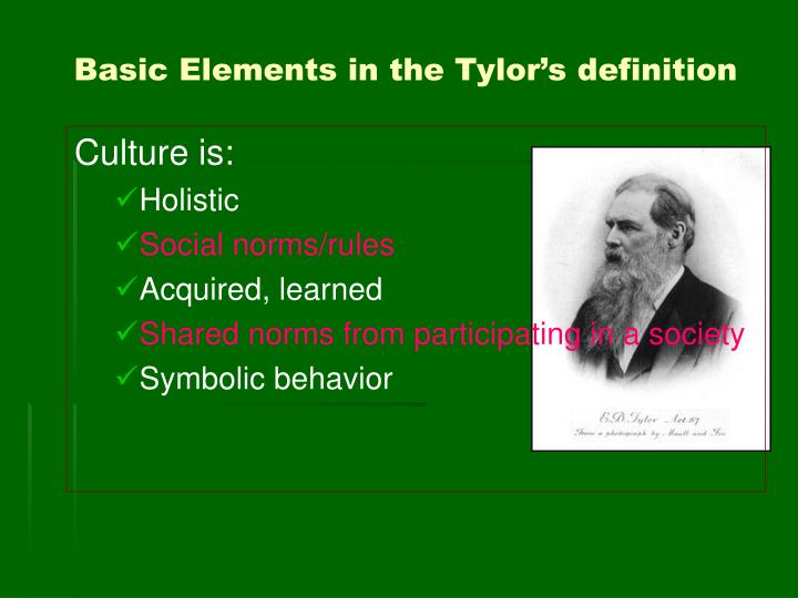 Basic Elements in the Tylor's definition