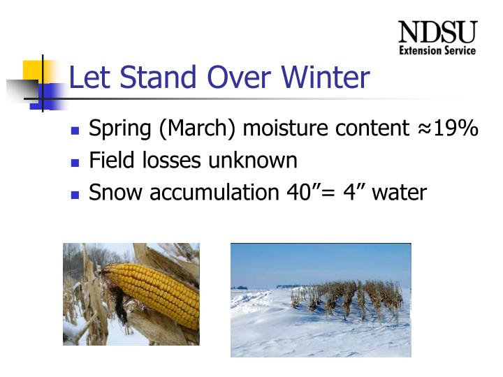 Let Stand Over Winter