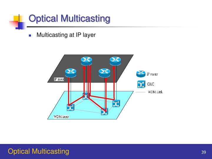 Optical Multicasting