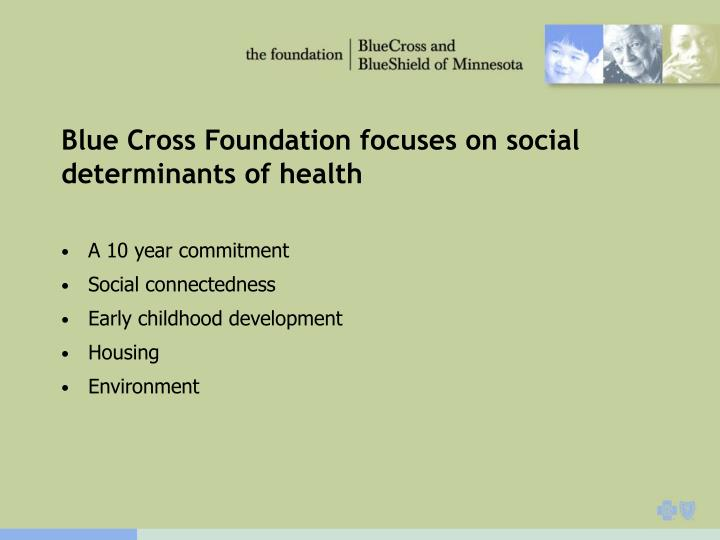 Blue Cross Foundation focuses on social determinants of health