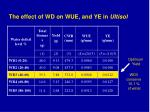 the effect of wd on wue and ye in ultisol