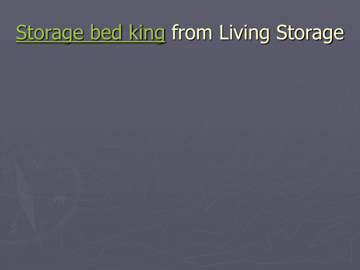 Storage bed king from living storage