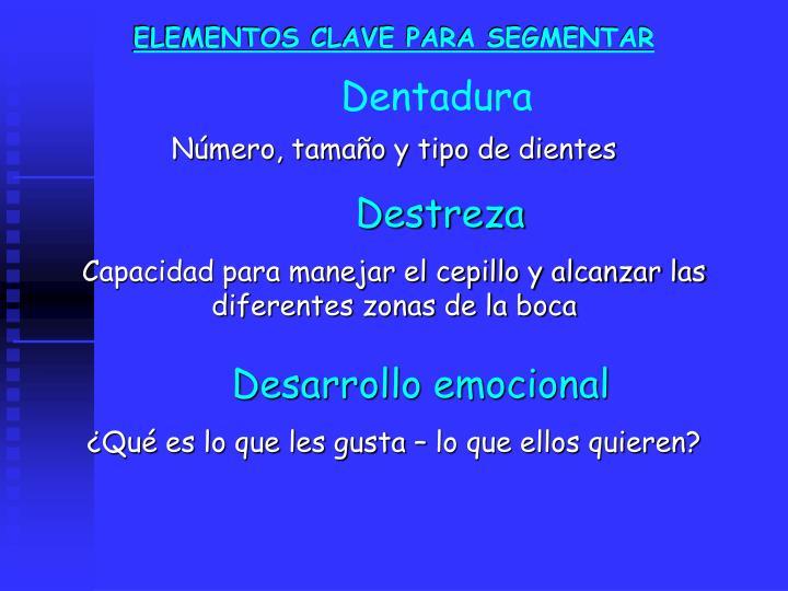 ELEMENTOS CLAVE PARA SEGMENTAR