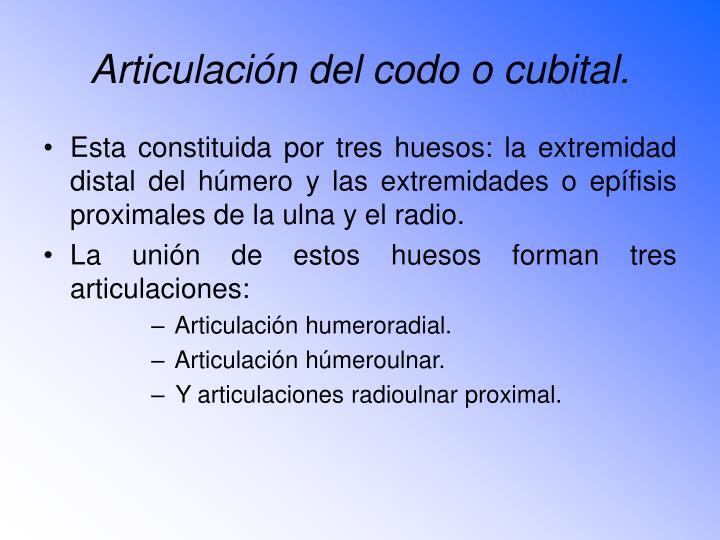 Articulación del codo o cubital.