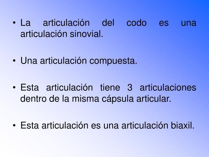 La articulación del codo es una articulación sinovial.
