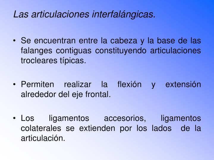 Las articulaciones interfalángicas.