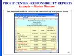 profit center responsibility reports example marine division