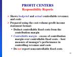 profit centers responsibility reports