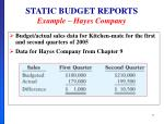 static budget reports example hayes company