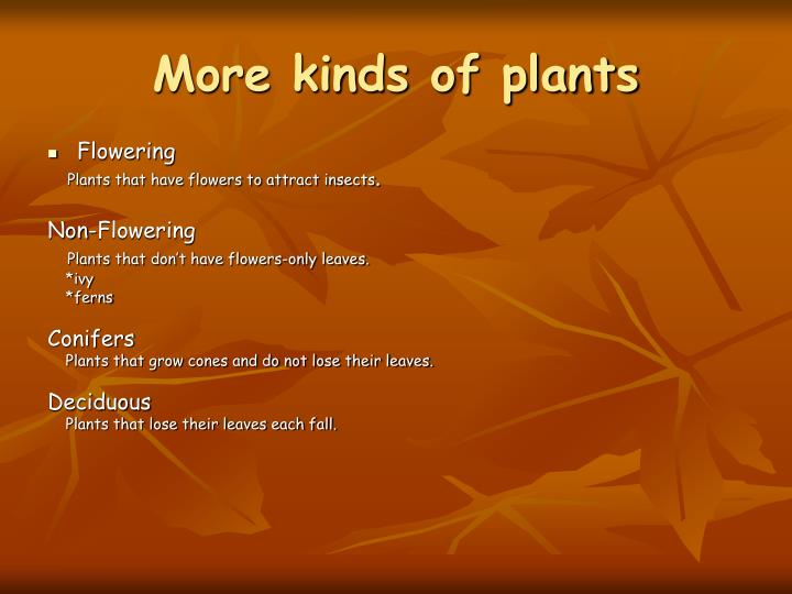 More kinds of plants