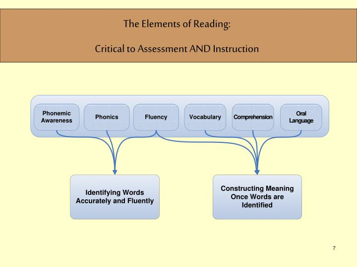 The Elements of Reading:
