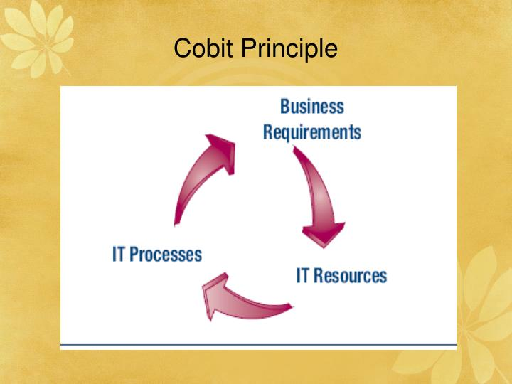 Cobit Principle
