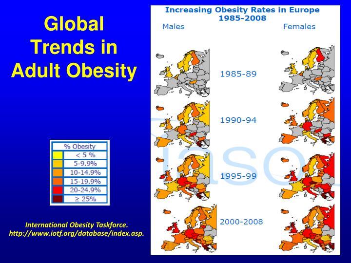 """adult obesity Muchos ejemplos de oraciones traducidas contienen """"of adult obesity"""" – diccionario español-inglés y buscador de traducciones en español."""