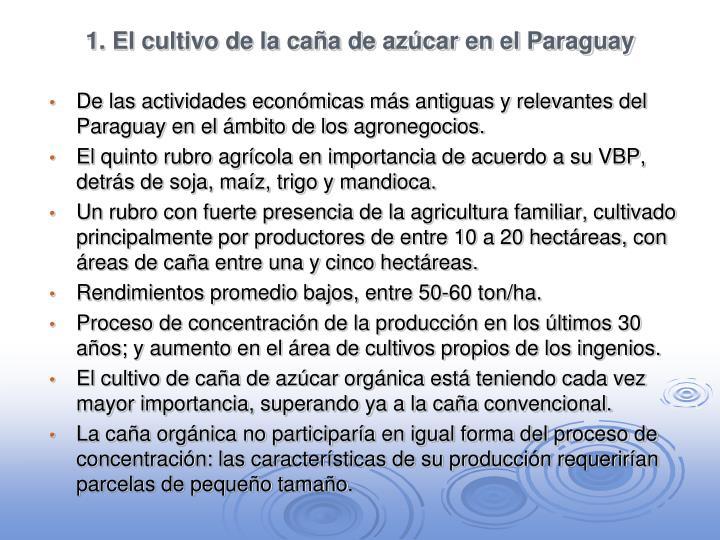 1 el cultivo de la ca a de az car en el paraguay