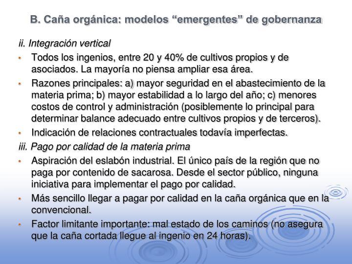"""B. Caña orgánica: modelos """"emergentes"""" de gobernanza"""