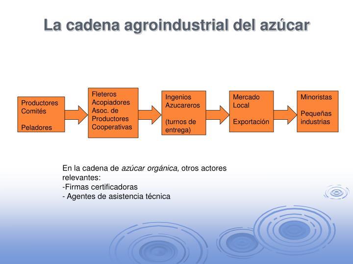 La cadena agroindustrial del azúcar