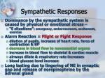 sympathetic responses