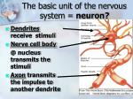 the basic unit of the nervous system neuron
