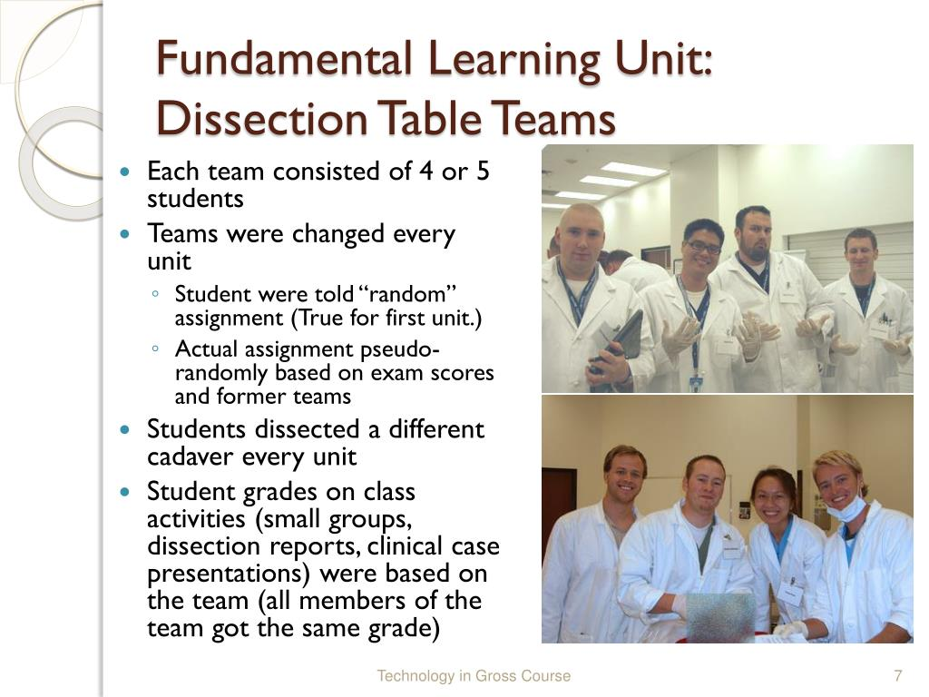 Fundamental Learning Unit: Dissection Table Teams